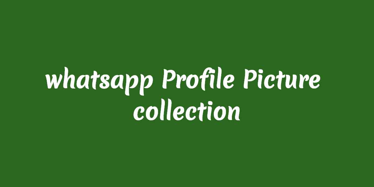 whatsapp-dp-bloggersmanual